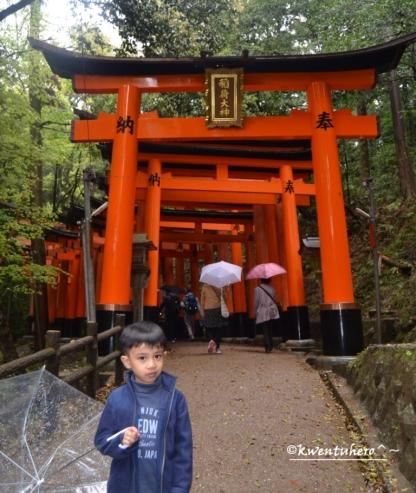 More torii Gates uphills